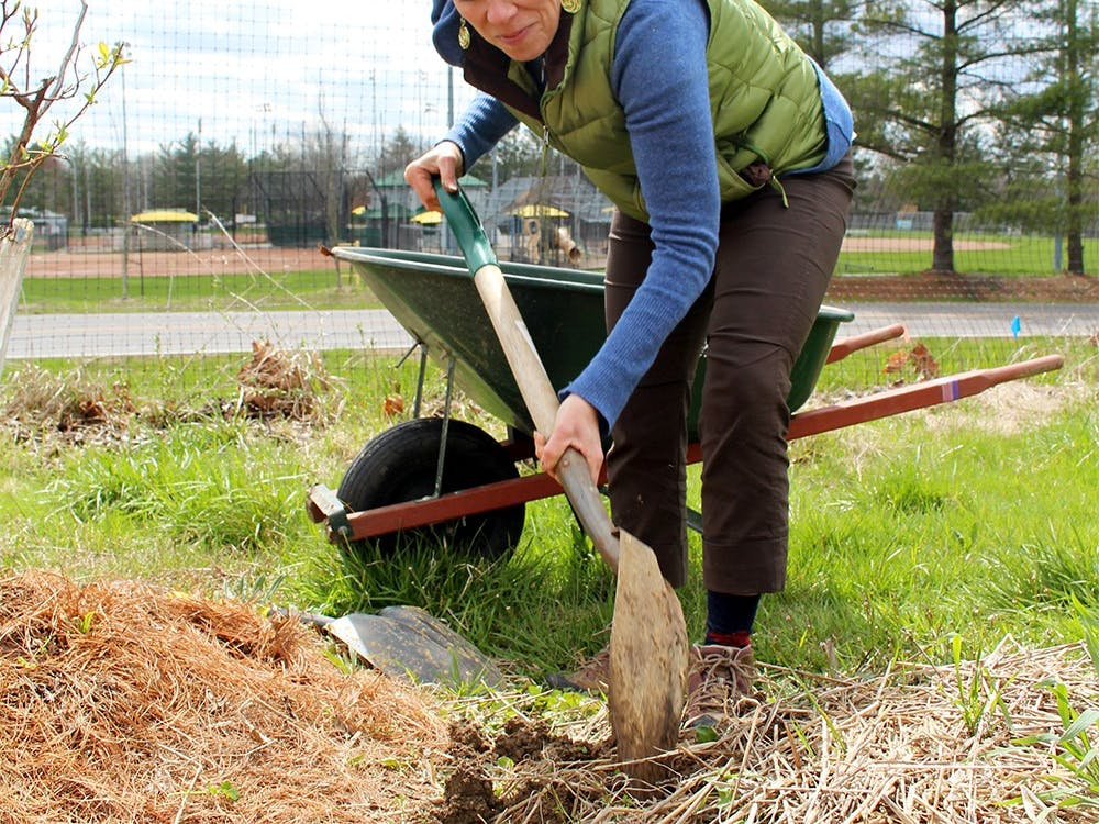 Amy Roche works Apr. 2 in the Bloomington Community Orchard. As the Outreach leader, Roche educates other community groups with similar projects.