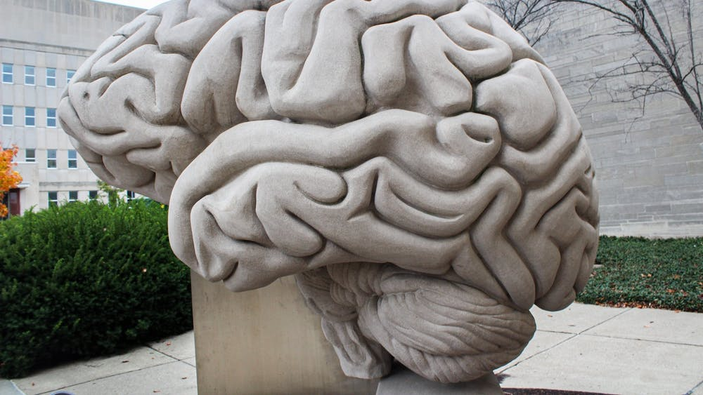 A brain sculpture is seen Oct. 28 outside of the Psychology Building. A new model of the human brain has been constructed by a team of IU neuroscientists to study brain diseases.