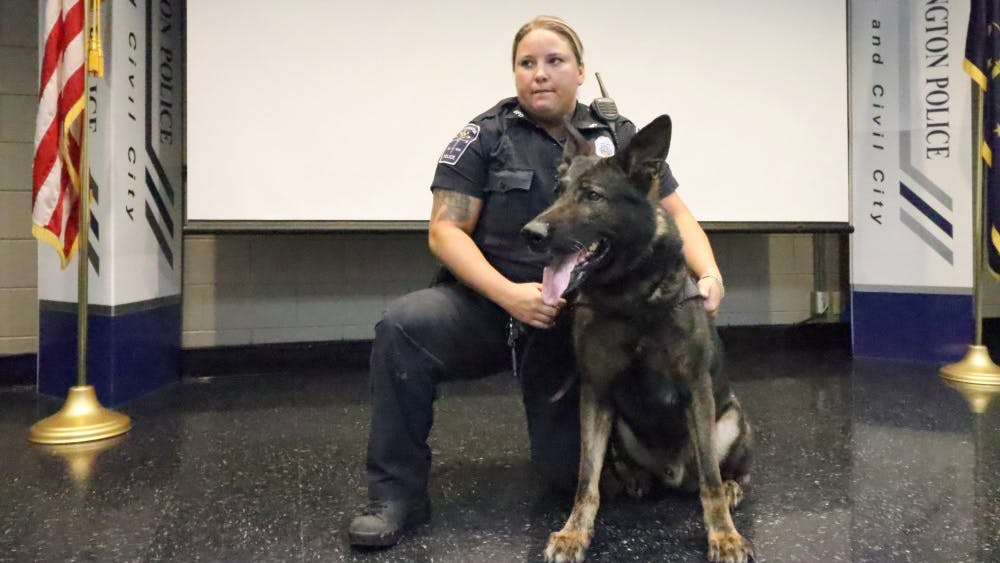Bloomington Police Department K-9 dog Ike stands for photos Sept. 24 at the Citizens Police Academy. The 6-year-old German shepherd from the Czech Republic was purchased by BPD in August 2014.