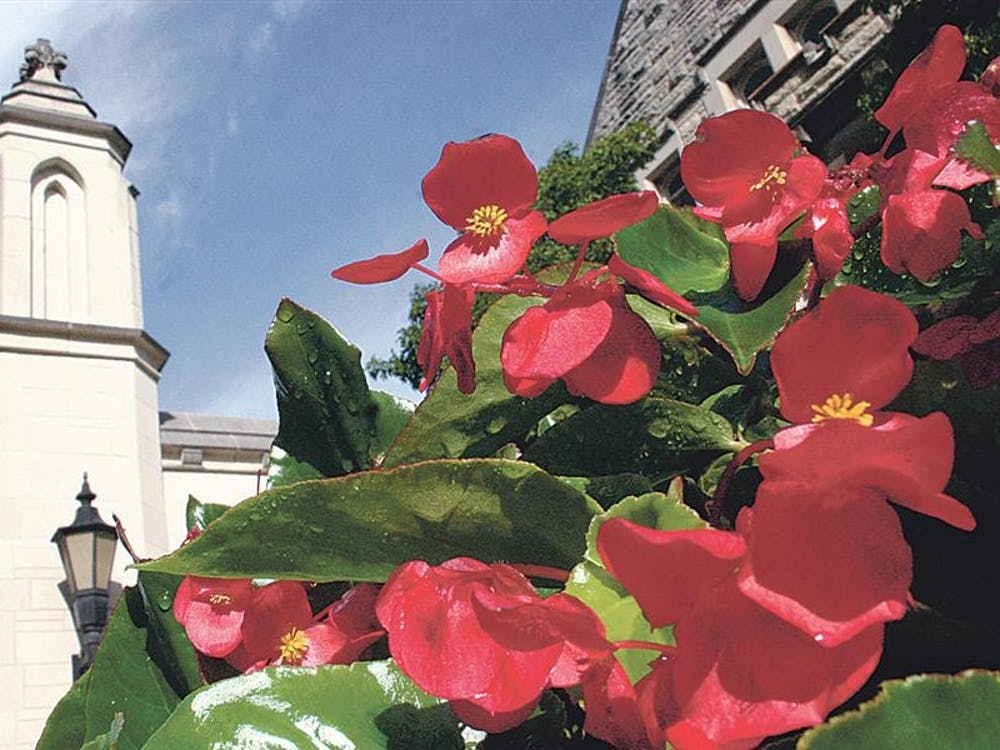 Several beds of red and white flowers adorn the western entrance of campus, the Sample Gates and Plaza.