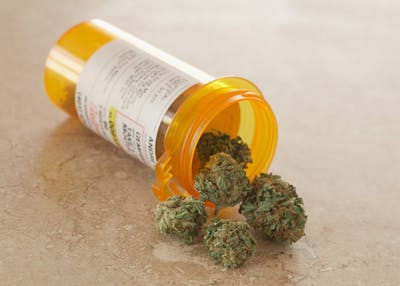 Medical marijuana sits in a prescription bottle.