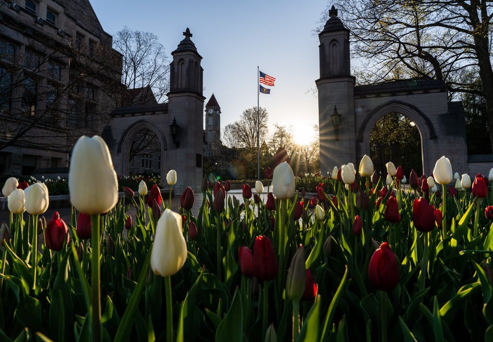 """<p>Tulips bloom at sunrise April 21 in front of the Sample Gates. Undergraduate students are eligible to take one online course per semester from six other schools in the <a href=""""https://www.btaa.org/"""" target="""""""">Big Ten Academic Alliance</a> during the 2020-21 academic year with fees and tuition waived.</p>"""
