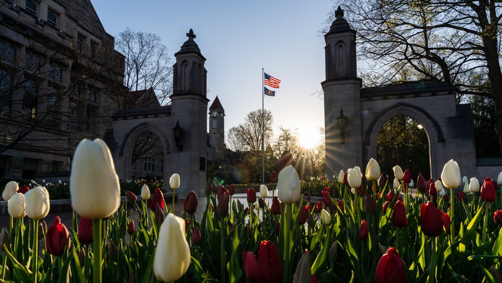 Tulips bloom at sunrise April 21 in front of the Sample Gates. Undergraduate students are eligible to take one online course per semester from six other schools in the Big Ten Academic Alliance during the 2020-21 academic year with fees and tuition waived.