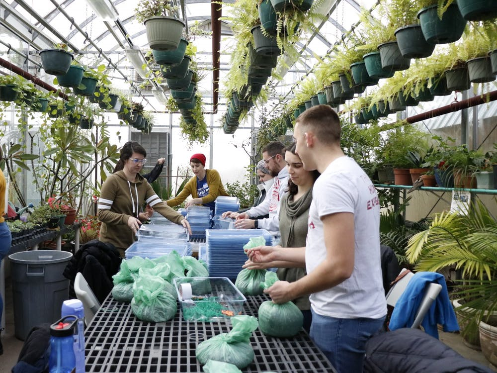 Volunteers tie bags of soil and assemble growing trays Jan. 20 at the Hilltop Garden and Nature Center at IU for a Martin Luther King Jr. Day service activity. The volunteers made plant-growing kits for local schools.