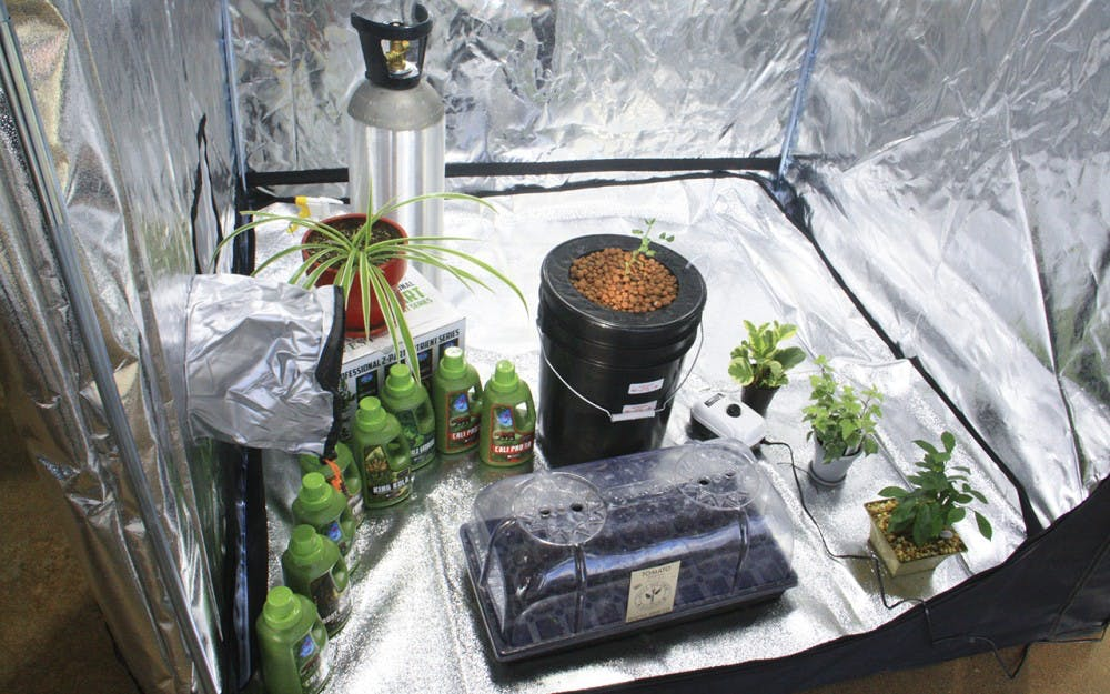 B-Town Botanicals, a new indoor garden supply and hydroponics store in Bloomington displays a deep water culture bucket in a grow tent. They offer grow room specialist who will design and install equipment for customers too.