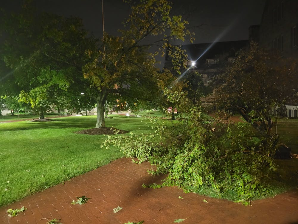 A fallen tree is pictured on campus after a storm June 18.