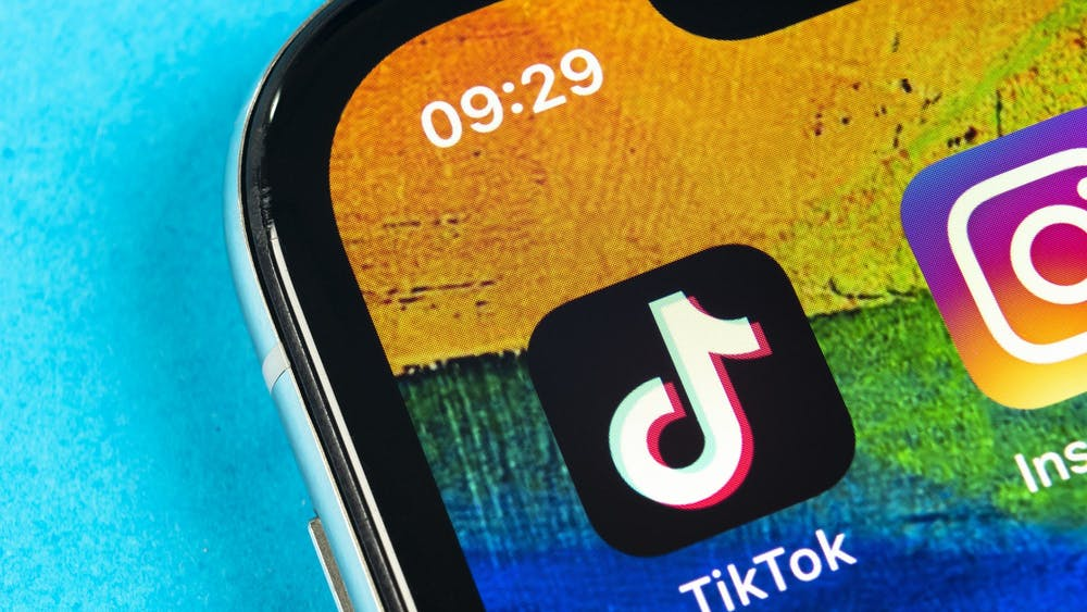 The TikTok app is pictured on the home screen of a phone.