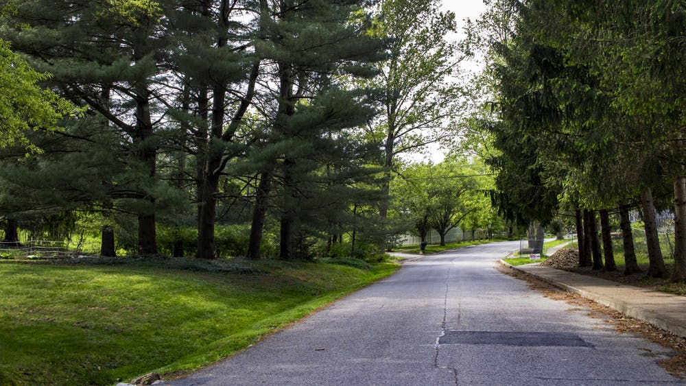 Trees line the street May 14 on Winfield Road in Bloomington. The coronavirus pandemic lockdown has led to decreased greenhouse gas emissions, according to IU air pollution professor Philip Stevens.
