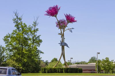 "A sculpture which cost about $352,900 and is titled ""Grace, Love and Joy"" stands in the middle of a roundabout in Carmel, Indiana."