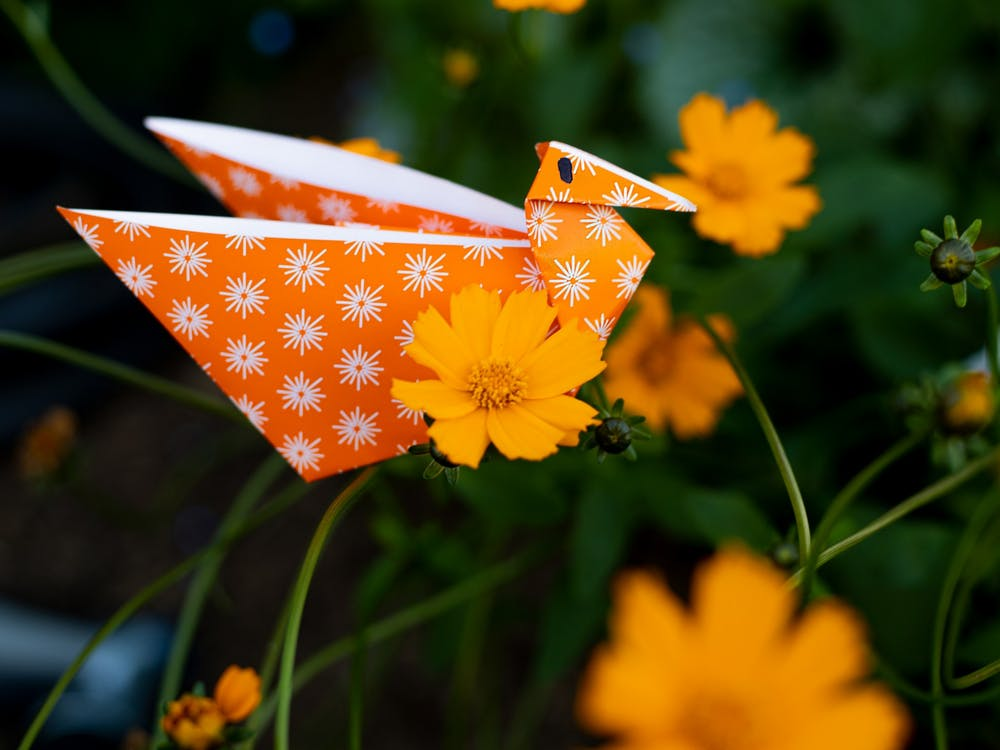 Sarah the swan perches on a tickseed flower. She is a special species of origami swan with pockets that are able to hold anything from paper clips to confetti.