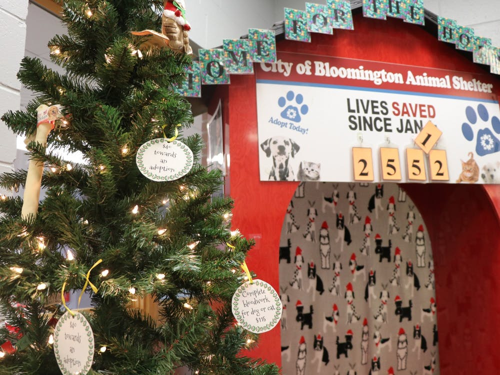 """The City of Bloomington Animal Shelter has around 120 to 150 animals available for adoption. The shelter launched its """"Home for the Holidays"""" initiative to find homes for those animals this year."""