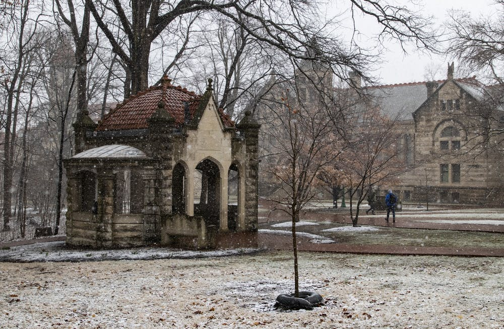<p>A freshly planted tree stands in front of the Rose Well House on Feb. 26 in the Old Crescent near Wylie and Owen halls. IU announced that it earned the 2019 Tree Campus USA recognition Feb. 18 for effective campus forest management.</p>