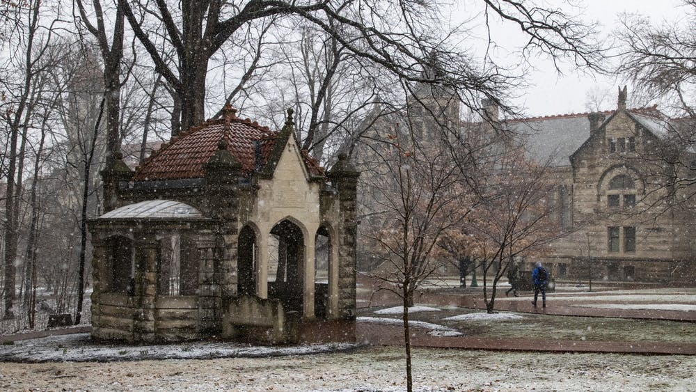 A freshly planted tree stands in front of the Rose Well House on Feb. 26 in the Old Crescent near Wylie and Owen halls. IU announced that it earned the 2019 Tree Campus USA recognition Feb. 18 for effective campus forest management.