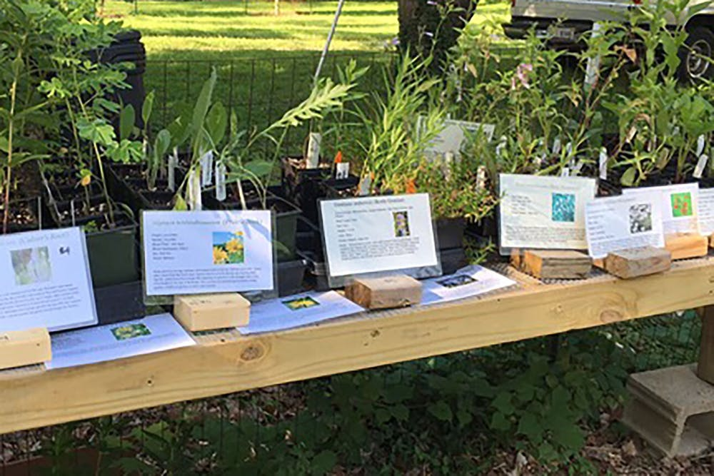 <p>Plants sit at the Hinkle-Garten Farmstead at 2920 E. 10th St. The Farmstead will have a Daisy-Days Native Plant Sale from<strong></strong>11 a.m. to 4 p.m. Saturday and 1-4 p.m. Sunday.</p><p><br/></p>