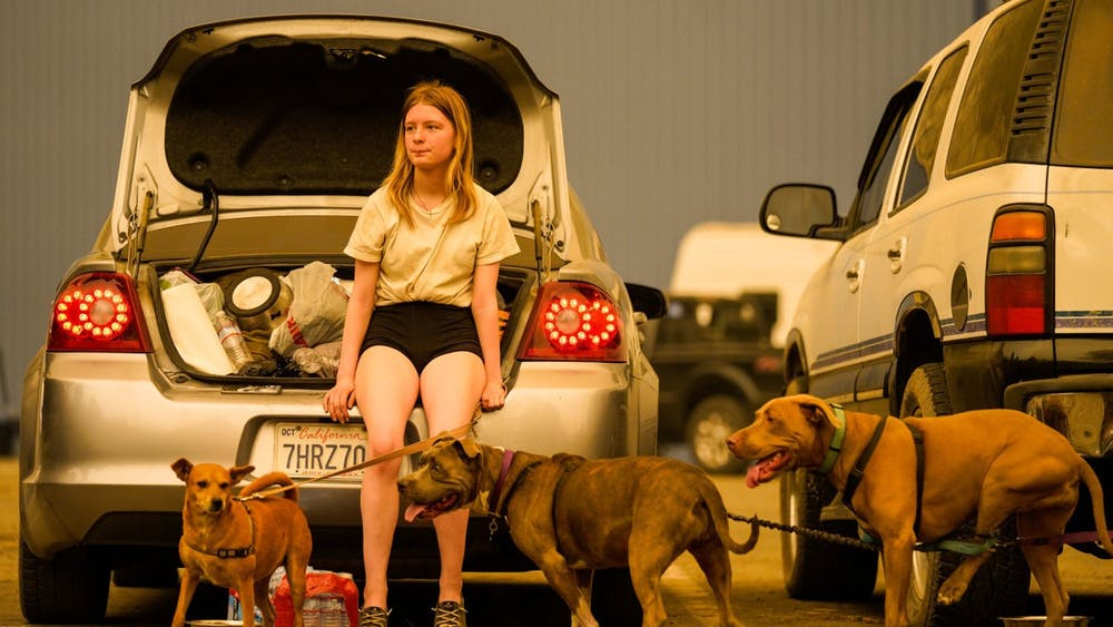 Kelsey Mueller, 16, holds her dogs while waiting with her family to be escorted from the evacuation zone at the Shaver Lake Marina parking lot during the Creek Fire on Sept. 7 in Shaver Lake, California. Cal Fire is actively responding to 13 wildfires as of Tuesday, with only three being smaller than 10,000 acres.