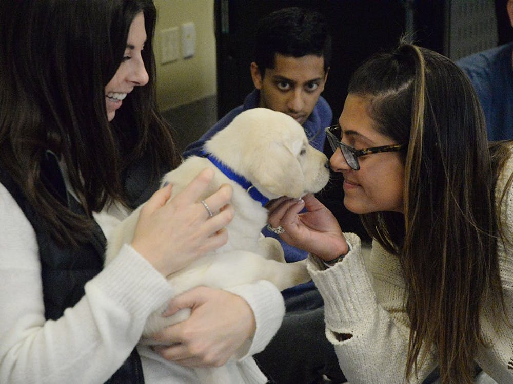 Seniors Abbey Stoller and Andrea Updike play with a puppy during a destress session on Wednesday in Hodge Hall. The event was hosted by ICAN at Indiana University, an organization that trains service dogs.