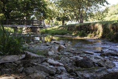 Water flows between rocks Sept. 24 in the Jordan River. The IU Board of Trustees voted 8-1 Friday to rename the sites on IU-Bloomington's campus honoring former IU president David Starr Jordan.