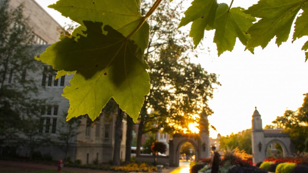 The sun sets behind leaves Sept. 15 at Sample Gates.