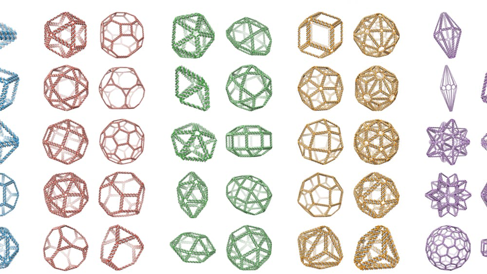 COURTESY OF SAKUL RATANALERT These are examples of the types of DNA origami nanostructures that can be designed.