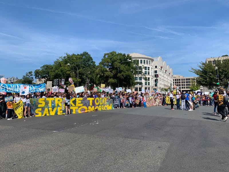 COURTESY OF LAIS SANTORO Student protestors participating in last week's Global Climate Strike in Washington, DC.
