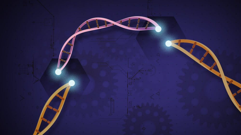 PUBLIC DOMAIN CRISPR targets and removes or replaces pieces of genetic material.