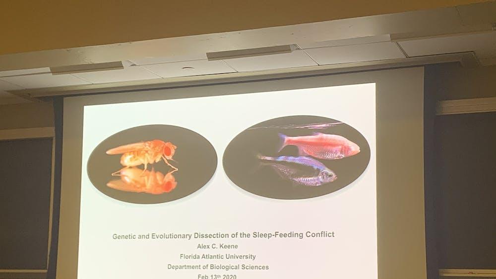 COURTESY OF WILLIAM BLAIR Ale Keene of Florida Atlantic University discussed sleep-metabolism in flies.