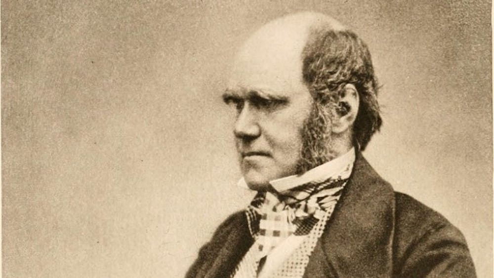 PUBLIC DOMAIN Darwin's theory of natural selection inspires novel chemical research.