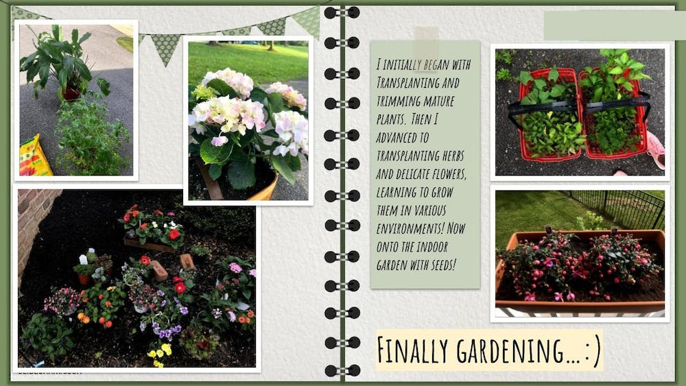 COURTESY OF SMITHA MAHESH The above scrapbook documents Mahesh's gardening achievements, from herbs in her apartment to the garden her significant other Alex maintains.