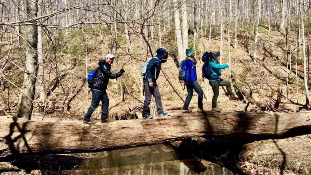 COURTESY OF EMMA WEINERT Hikers cheerfully march across a log at Oregon Ridge Park, showing that fun can be had even in the cold.