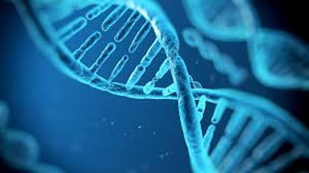 B8_DNA