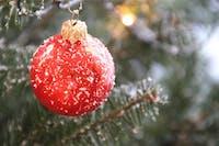 Fir Christmas Christmas Decorations Christmas Tree
