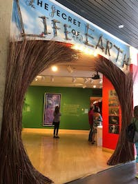 COURTESY OF MARVIS GUTIERREZ AVAM's new exhibit emphasized climate change's need for advocacy.