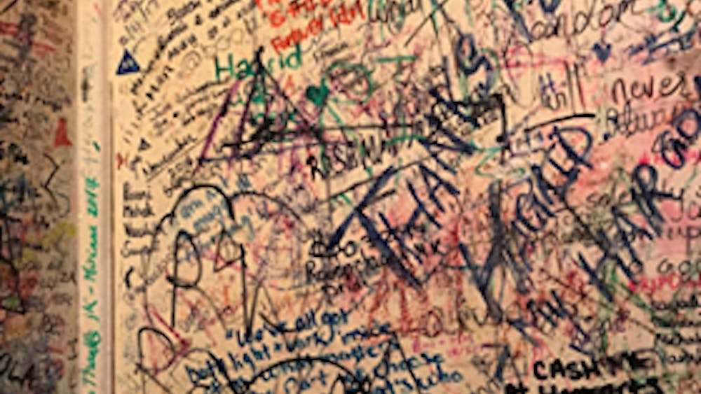 COURTESY OF ADDY PERLMAN Perlman relates her quarantine experience to the famous graffiti wall in the Elephant House.