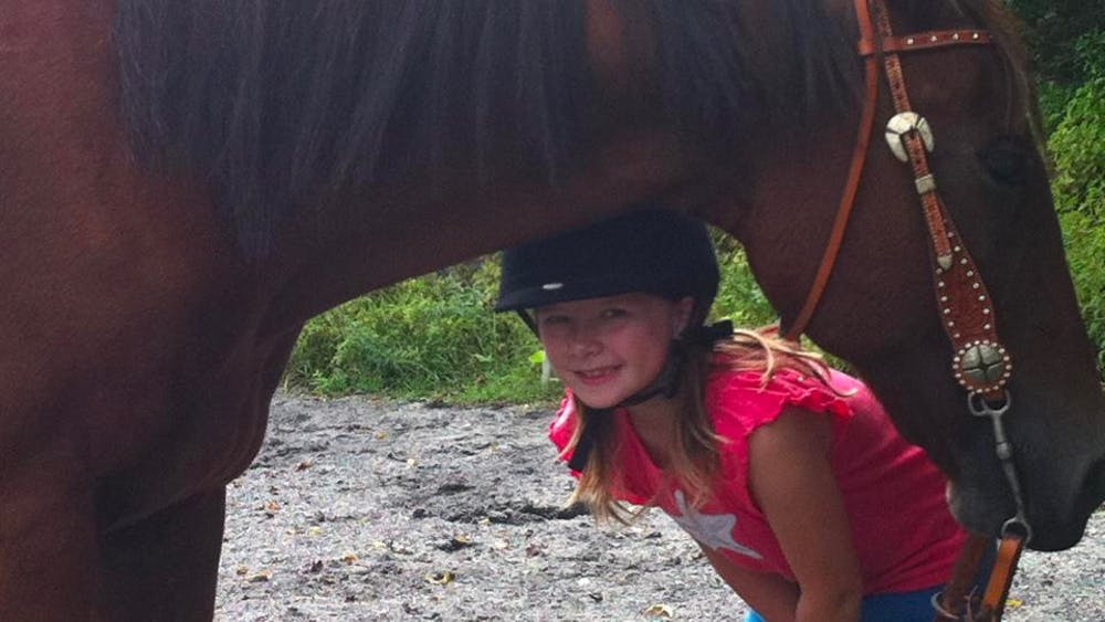 COURTESY OF MADELYN KYE Kye tells the story of her mother's rescue horse Quincy and his declining health.