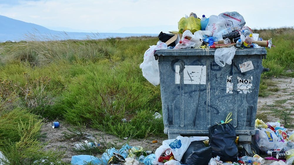 PUBLIC DOMAIN Ko argues that we can reduce plastic use through smart shopping decisions.
