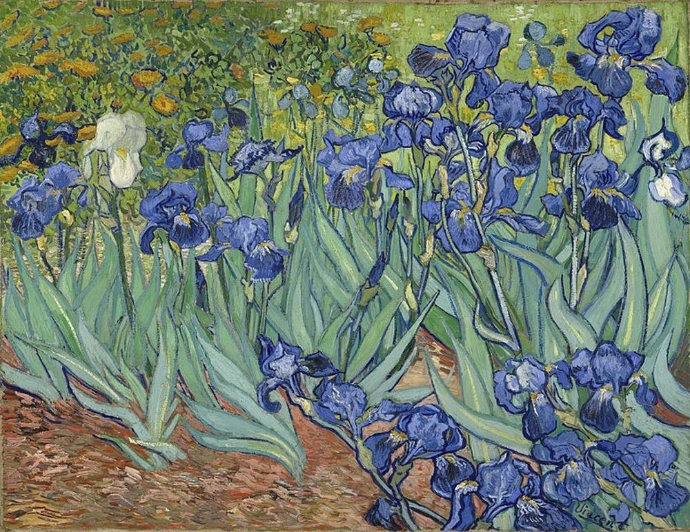 9-irises-the-getty-center