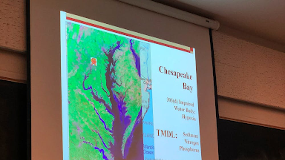 COURTESY OF YANNI GU Excess nitrogen and phosphorous are in the water of the Chesapeake Bay.
