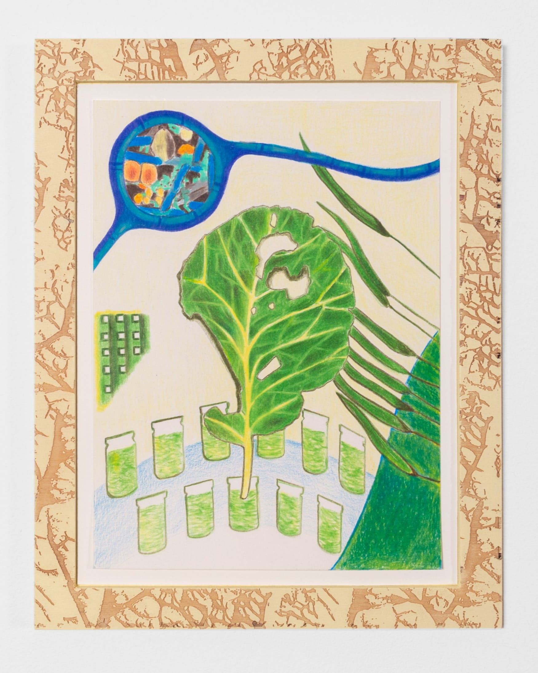 cabbage-looper-leaf-tracings-2019-ongoing-colored-pencil-on-paper-9-x-12-1