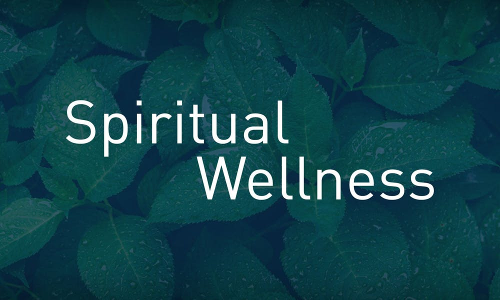 Wellness For the Body and the Mind