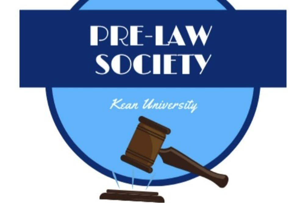 A Look Into the Legal Field