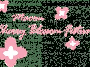 cherry-blossom-festi