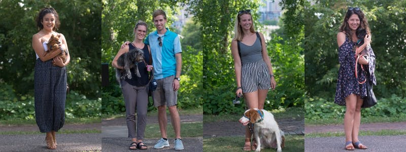 From left, Lourdes Juarez with Muñeco, Erin and Brian Hart with Rona, Kim Lykens with Elvin, and Peri Riddel with Arlo pose for portraits during the northeast Minneapolis dog parade on Friday, July 28.