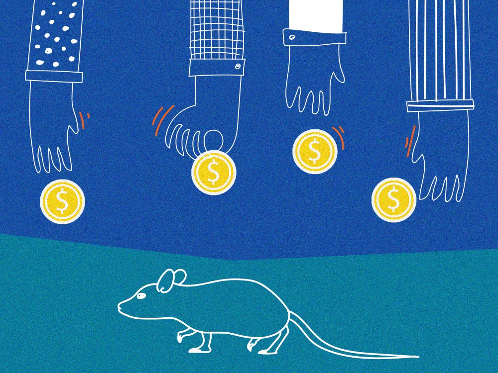 Mouse engineered at UMN brings in $1 million