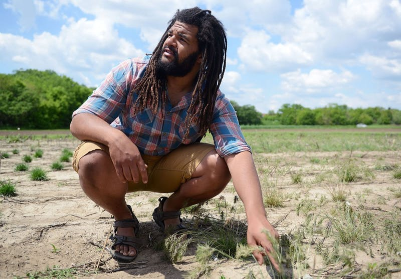 Graduate student in the applied plant science program Clemon Dabney III observes his crops in one of his plots on St. Paul campus. Dabney grows several varieties of grasses and hybridizes them to observe various favorable phenotypic differences.