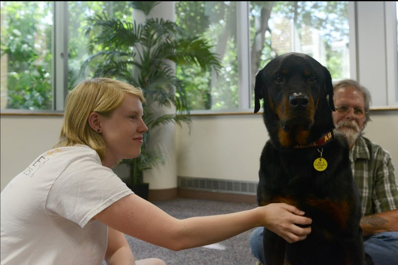 The University of Minnesota PAWS program expanded its hours for the summer session. PAWS Program Assistant McKenna Adler, who studies Animal Science at the University, pets Andy the dog at Boynton Health Services on Thursday, June 15, 2017