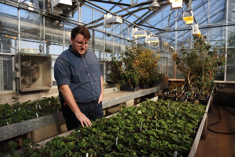 Horticultural Science Ph.D candidate Seth Wannemuehler explains the science behind fruit breeding on Thursday, Nov. 15 on Saint Paul campus.