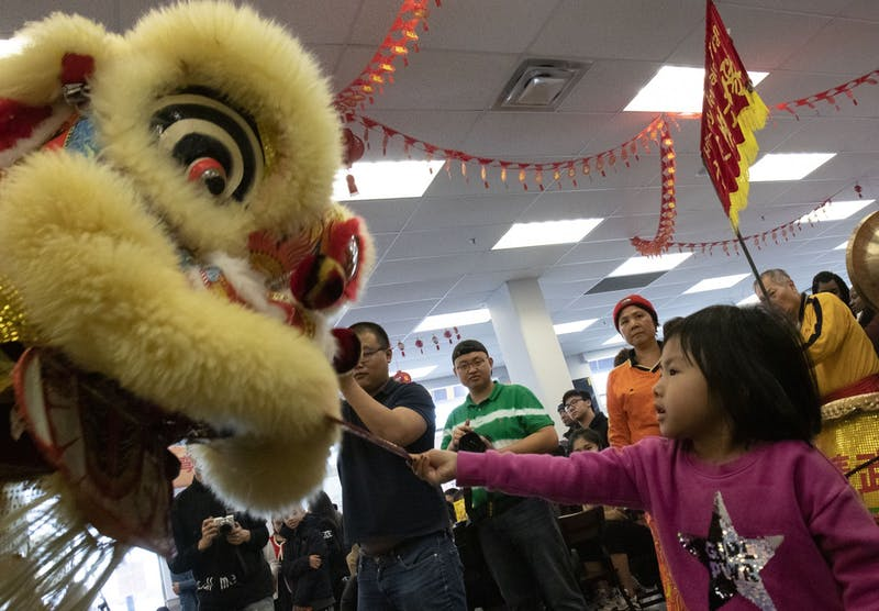 "Monica Tran ""feeds"" the lion during the Lion Dance performed by Hu's Lucky Lion Dance Team while attending the Lunar New Year celebration at University Food Hall with her father Vu Tran on Sunday, Jan. 26. ""Feeding"" the lion, either with friuts or with rewards for the lion troupe, is a tradition to bring prosperity and good luck in the coming year."