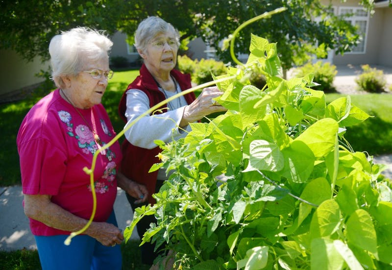 Residents Ira Eberling, left, and Marlys Lowe examine the progress of their community garden at Emerald Crest Assisted Living & Memory Care in Burnsville on Monday afternoon.