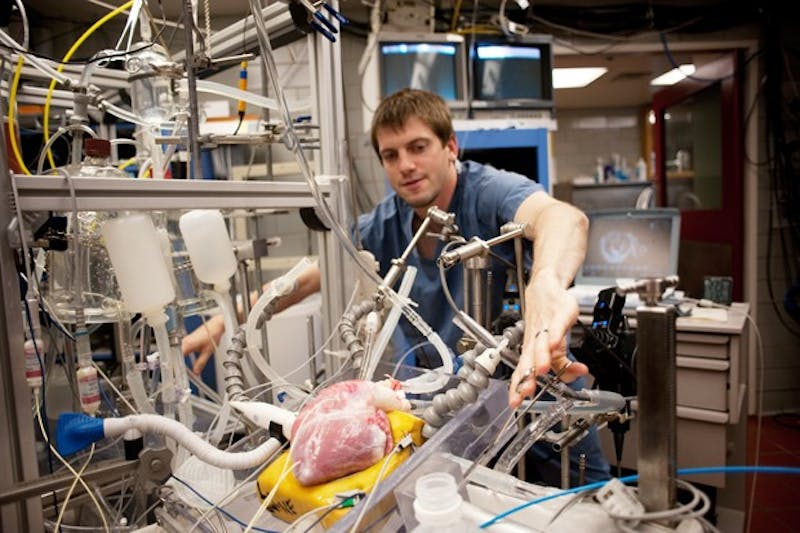 Bio Medical PHD student Chris Rolfes works on an experiment Tuesday in the Visible Heart Laboratory in the Mayo Building.