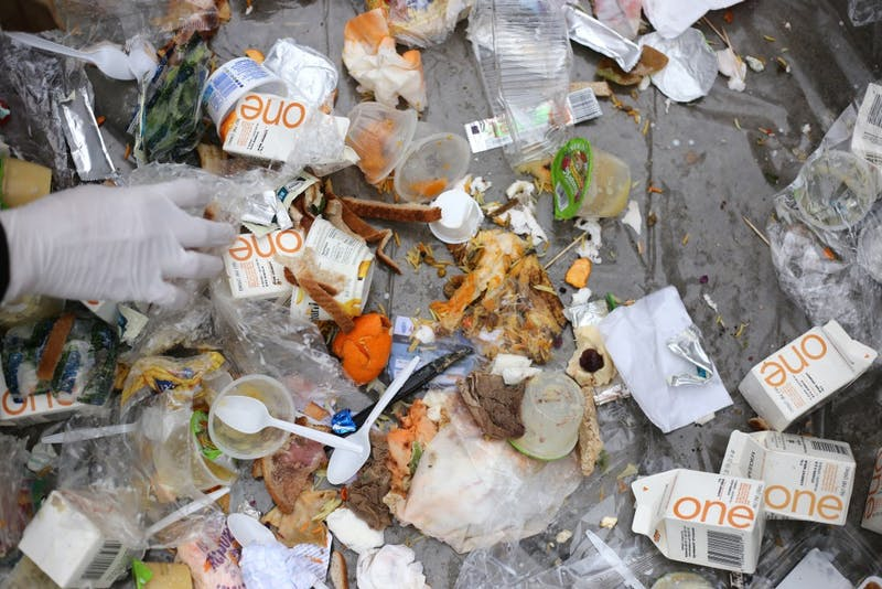 University of Minnesota students sifted trash from the Coffman Marketplace food court that wasn't already tossed into the correct recycling, compost or waste bin on Wednesday, April 18 in outside Williamson Hall.
